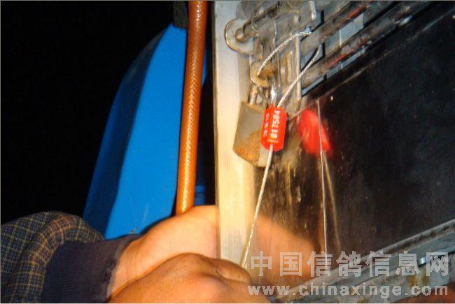 260公里开鲁西比赛图片-中国信鸽信息网 www