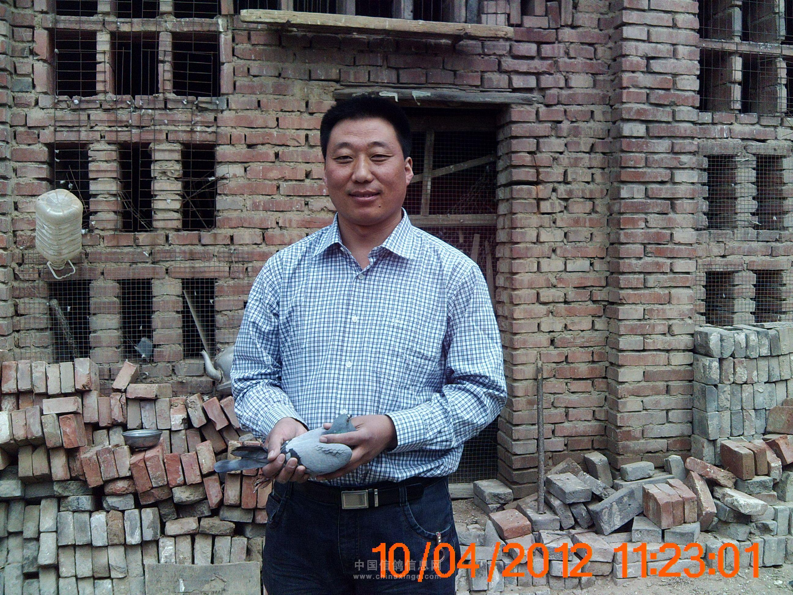 南和县外环车祸图片大全 要某 男,25岁,河北省南和县人图片